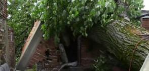 ДЕН ПРЕДИ ИДВАНЕТО НА ЛЯТОТО: Бури и градушки нанесоха сериозни щети в страната (ОБЗОР)