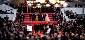 Кинофестивалът в Кан обяви специална селекция, посветена на климата (ВИДЕО)