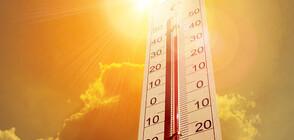 Жълт код за опасни горещини в 12 области