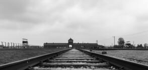 САЩ и Германия с инициатива срещу антисемитизма