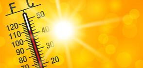 Опасни горещини: Увеличиха се сигналите до Спешна помощ