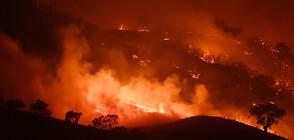 Големи пожари на различни места в Гърция (СНИМКИ)