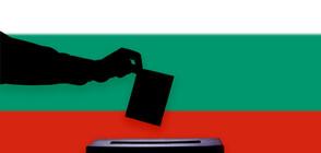 Рекордна избирателна активност в Никити