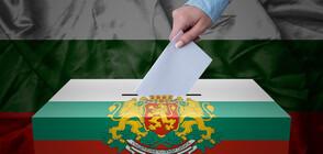 Българският вот от Австралия до Уганда (ВИДЕО)