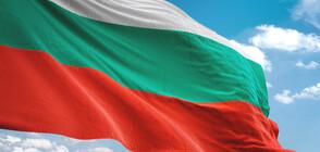 Английски футболни фенове опитаха да скъсат българското знаме