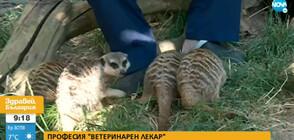 Лятно зооучилище в Зоологическата градина в София (ВИДЕО)