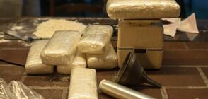 В Ротердам хванаха кокаин за над 220 млн. евро