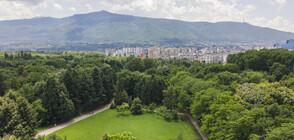 Достатъчно ли са мерките за подобряване на въздуха в София?