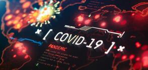 СЗО ПРЕДУПРЕДИ: Новите случаи на COVID-19 се увеличават