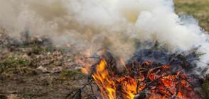 Огънят в Сакар планина обхвана над 5 000 дка