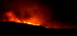Горски пожари бушуват пети ден във Финландия (СНИМКИ)