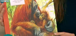 """""""Атлас на застрашените видове"""": Кои животни са на изчезване (ВИДЕО)"""