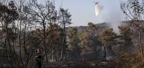 Огромен пожар унищожи къщи и борова гора край Атина