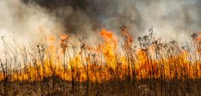 Гасят пожари край няколко села, има засегнати къщи