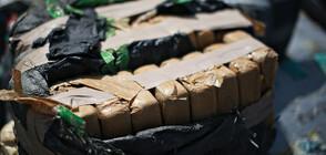 Откриха половин тон кокаин в кашони с банани в Румъния