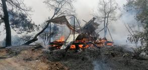 МВнР: Няма данни за пострадали български граждани при пожара в Анталия