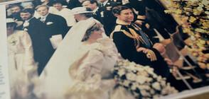 Продават на търг парче от сватбената торта на принц Чарлз и Даяна (СНИМКИ)