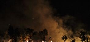 Външно: Няма пострадали българи при пожарите в Гърция