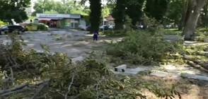 Отнесени покриви и паднали клони след буря в Септември