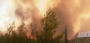 ПОЖАРИТЕ В ТУРЦИЯ: Разказ от българи, срещнали се с огнената стихия (ВИДЕО)