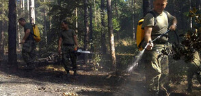 Военни и доброволци влязоха в борбата с огъня над Розино