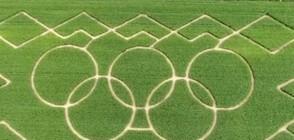 Олимпийски лабиринт в царевична нива в Германия (ВИДЕО)
