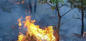 30 дни кризисно положение в Северна Македония заради пожарите