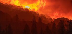 Пожарът в Северна Македония се приближава към България
