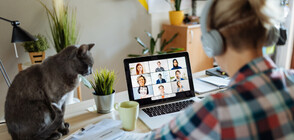 НОВОТО НОРМАЛНО: Все повече фирми предлагат работа вкъщи