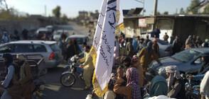 Талибаните вече са превзели 65% от Афганистан (ВИДЕО+СНИМКИ)