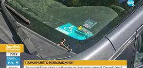 """Защо паяк вдигна кола с инвалиден стикер пред хотел в """"Слънчев бряг"""""""