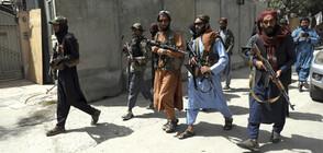 """""""Франс прес"""": Талибаните изпитват огромна нужда от финансова помощ"""