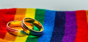 На референдум швейцарците подкрепиха еднополовите бракове