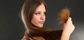 5 неща, които трябва да знаеш за пресата си за коса