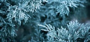 Времето остава хладно, очаква се първият сняг в Рила