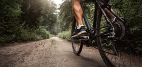 Унгарец тръгна с велосипед към Италия и стигна...до Дания