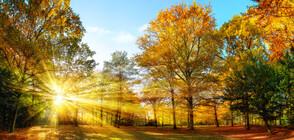Слънцето се усмихва почти над цялата страна в последния ден на тази седмица