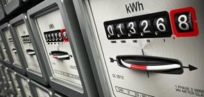 Мая Манолова иска компенсация за тока