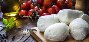 11 пробиотични храни за железен имунитет (ГАЛЕРИЯ)