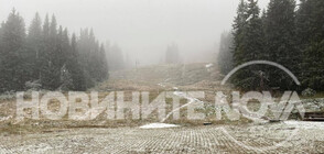 Първи сняг падна на Витоша (ВИДЕО+СНИМКИ)