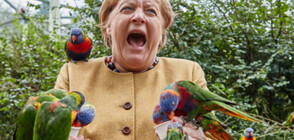 Папагал ухапа Меркел (СНИМКИ)