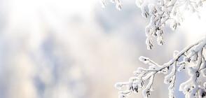 ИСТИНСКА ЗИМА: 30 см снежна покривка в Турция (СНИМКИ)
