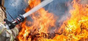 Голям пожар гори над Водната кула в Карлово