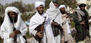 Талибаните със забрана да си правят селфита