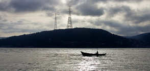 Франция може да санкционира Великобритания заради разрешителни за риболов