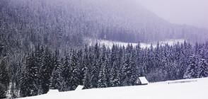 Сняг покри планините (ВИДЕО)