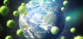 COVID-19: Глобално случаите намаляват, в Европа - растат