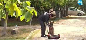 Полицейските ни кучета разкриха над 150 престъпления за година