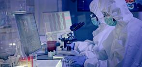 Учени създадоха същество, което не се нуждае от кислород (ВИДЕО+СНИМКИ)