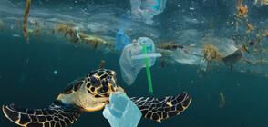 Пластмасовите отпадъци се увеличават тройно до 2040 година